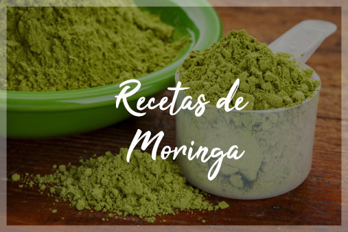 moringa-1